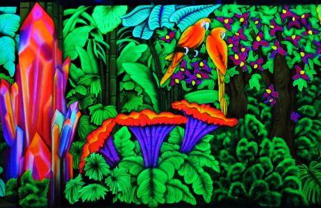 Colorboration 15